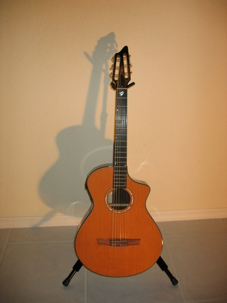 Breedlove Guitars Current Inventory Pre Owned